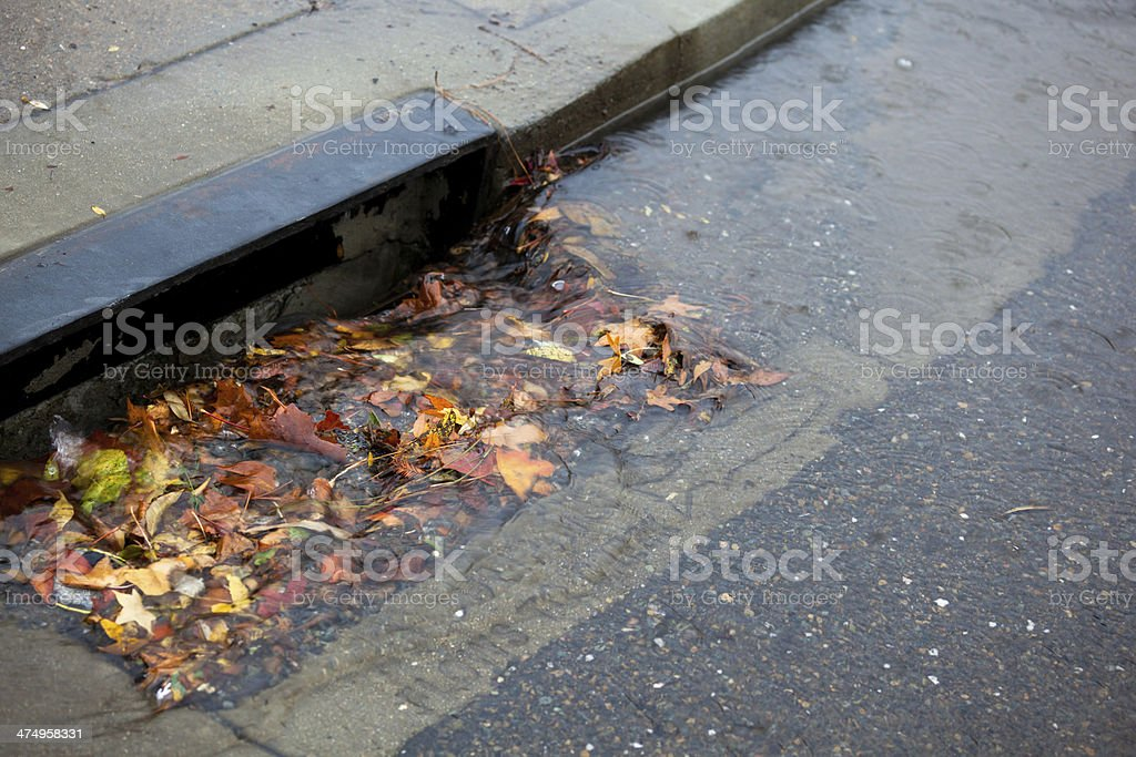 Storm Drain Blocked stock photo