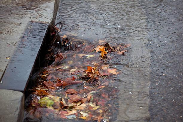 storm abfluss teilweise paralysiert fallen blätter auf regnerischen tag - kanalisationsabflüsse stock-fotos und bilder