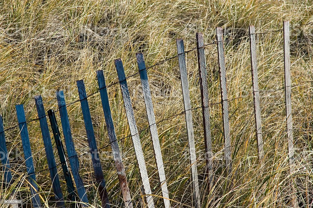 Storm Fence in Marsh Grass stock photo
