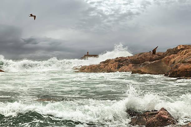 porto de tempestade - rain clouds porto portugal imagens e fotografias de stock