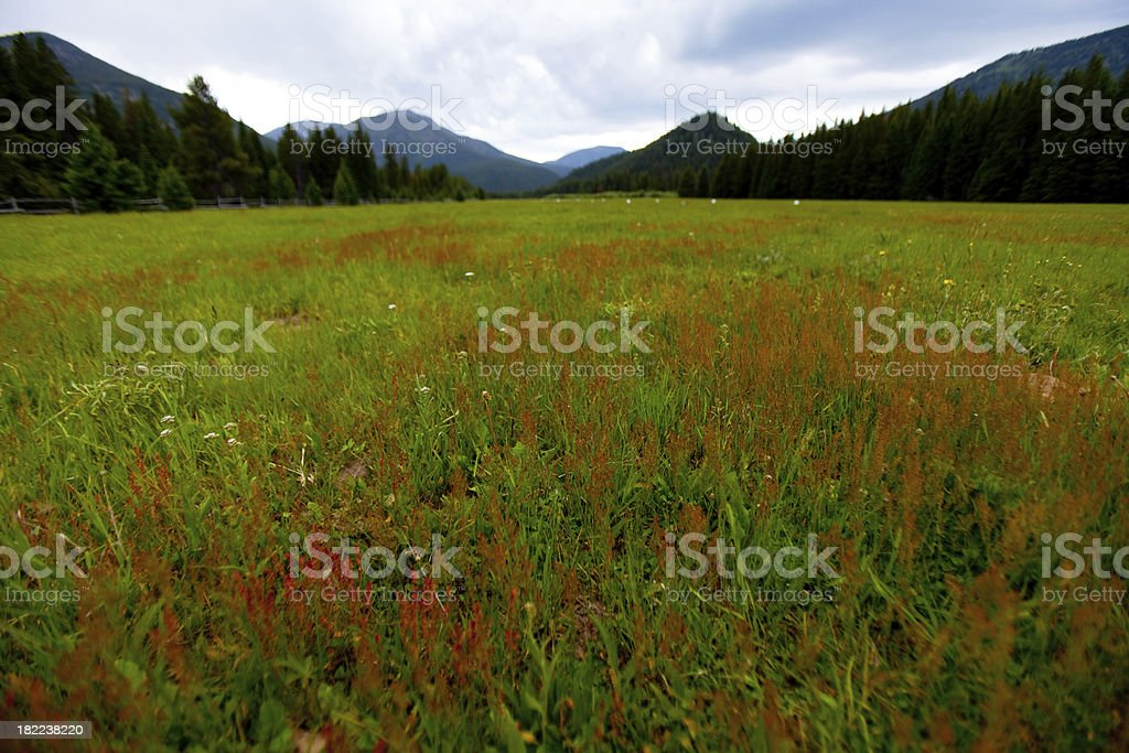 Storm over a meadow and mountains stock photo