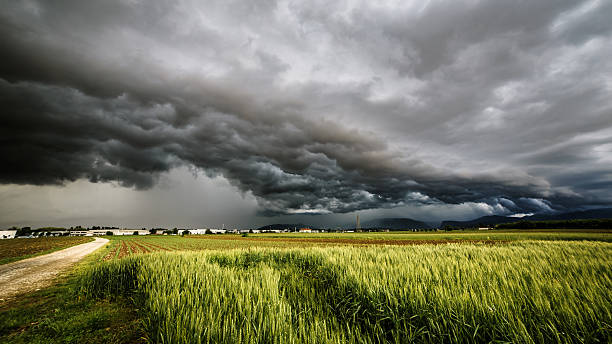 storm over the fields - dramatic sky stock photos and pictures