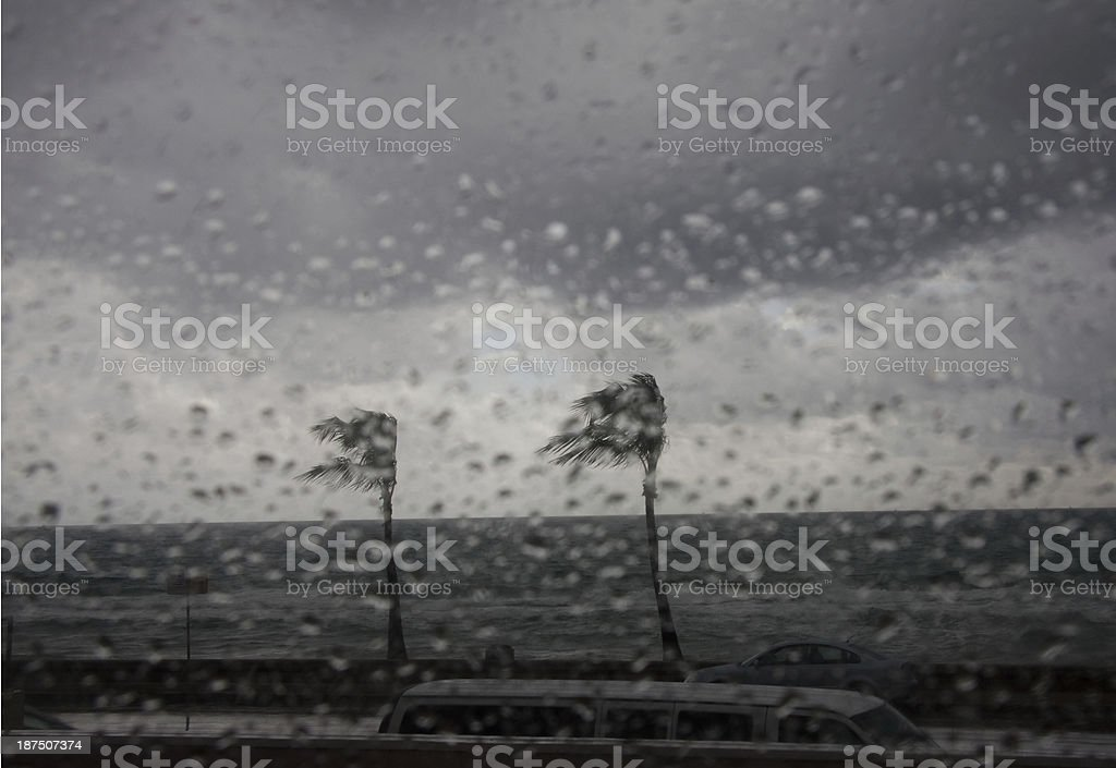 Storm scene from inside a window South Florida stock photo