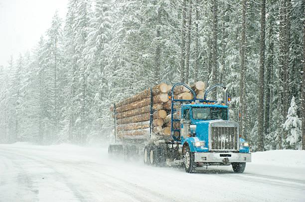 폭풍 트럭 - 목재 공업 뉴스 사진 이미지