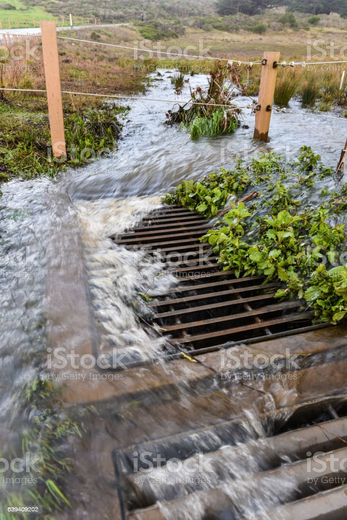 Storm water flows into drain near road – Foto