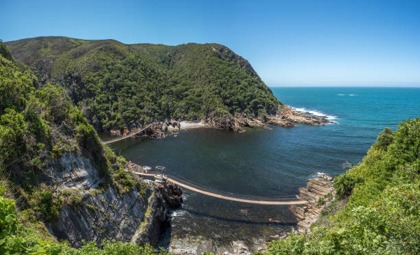 Storms River Suspension Bridge, Eastern Cape, Tsitsikamma National Park, South Africa – Foto