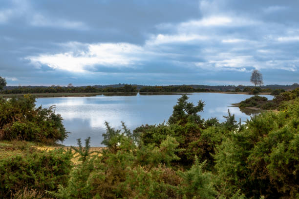 Stormy clouds over lake in New Forest countryside stock photo