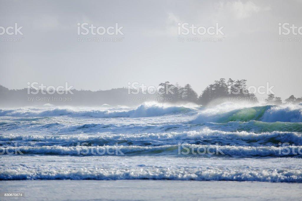 Stormy Coastline in Tofino stock photo