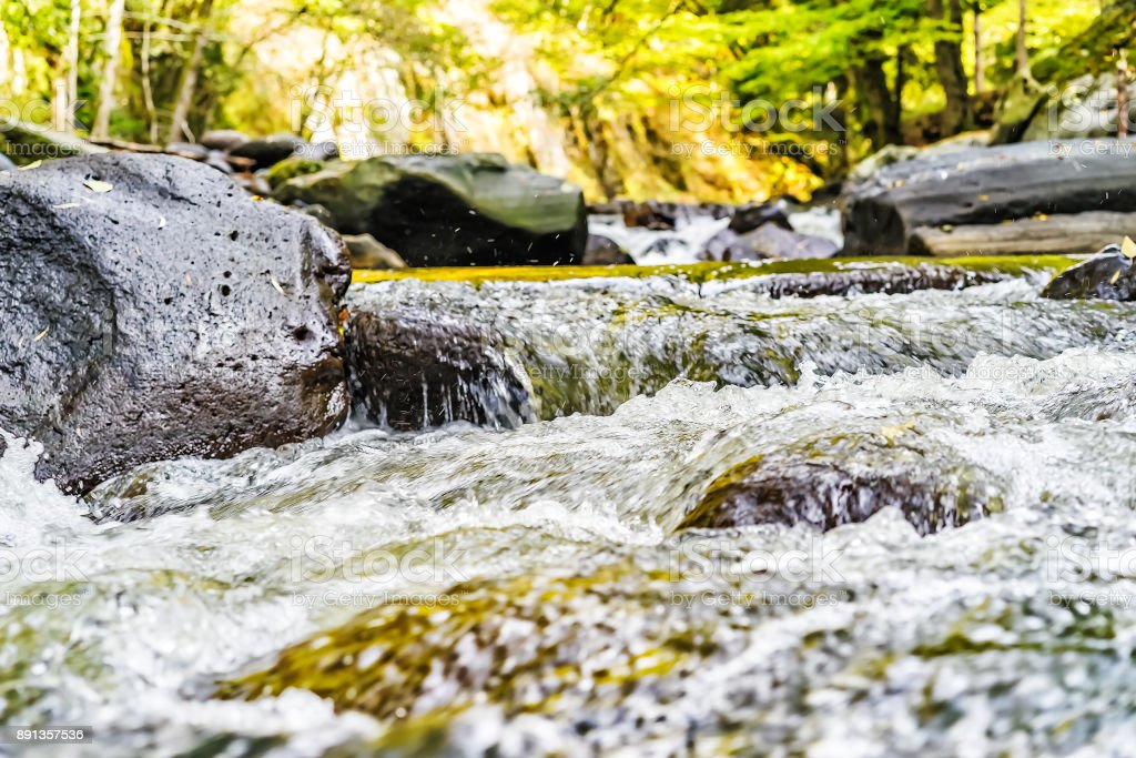 Stormy creek in the Caucasus mountains stock photo