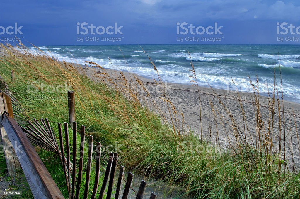stormy day on jupiter beach royalty-free stock photo