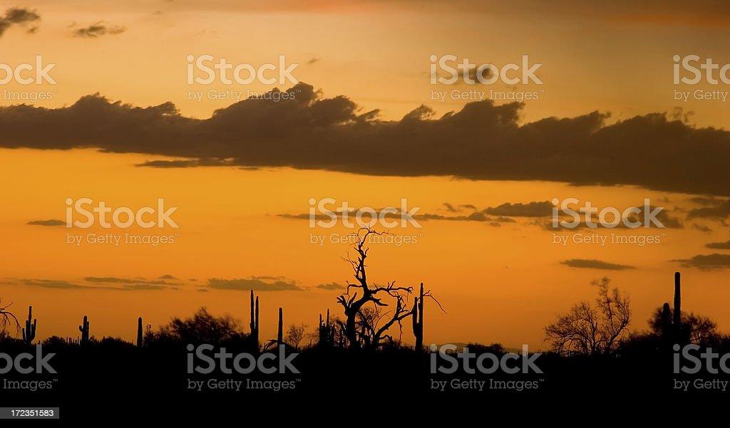 Stormy Desert Sunset royalty-free stock photo