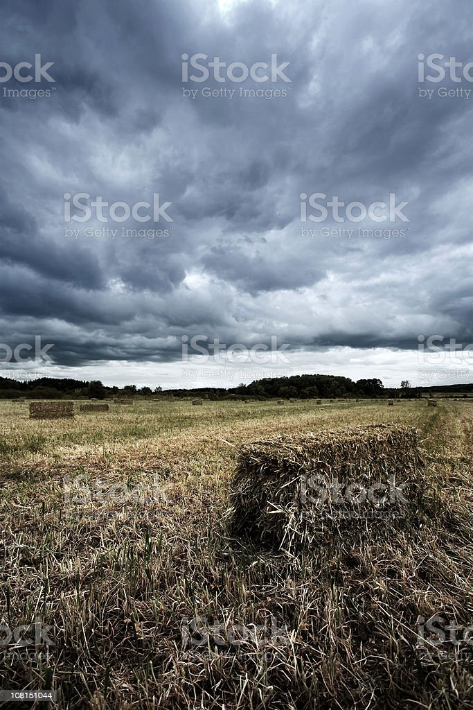 Stormy Harvested Field royalty-free stock photo