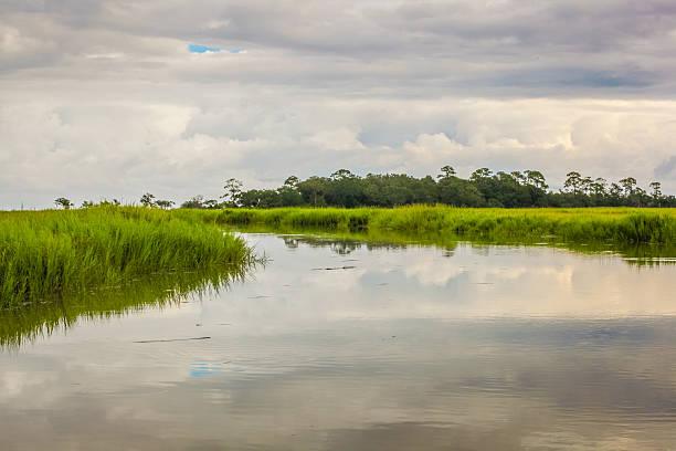Stormy Marsh stock photo