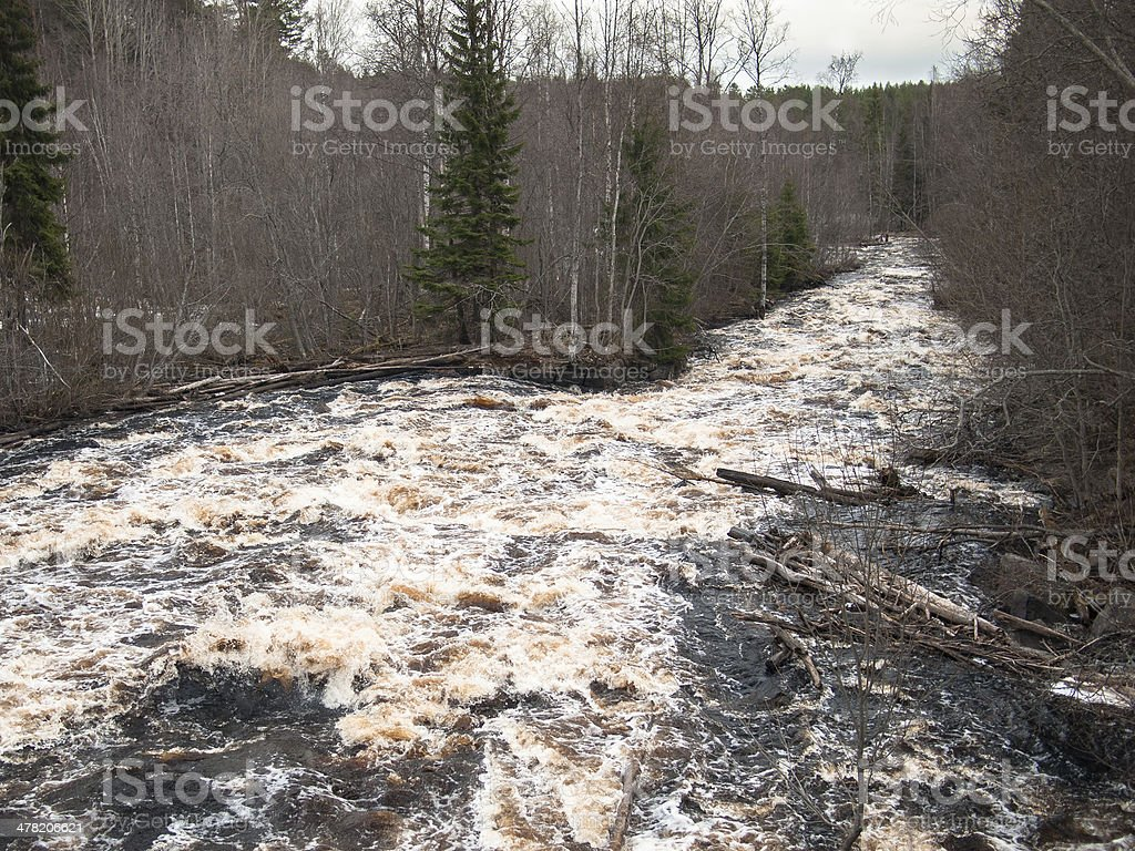 Stormy river with logs royalty-free stock photo