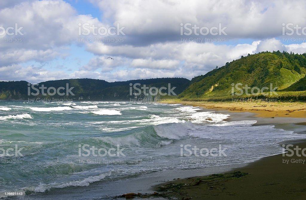 Stormy sea royalty-free stock photo
