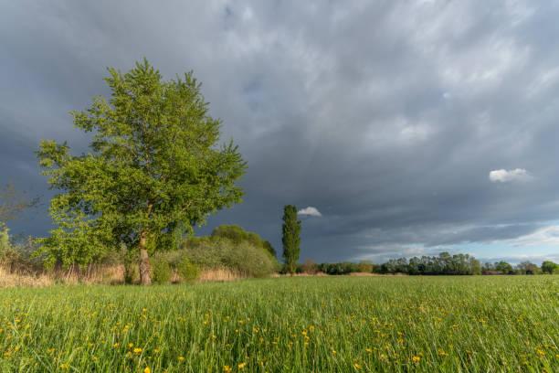 ciel orageux au printemps - orage en alsace photos et images de collection