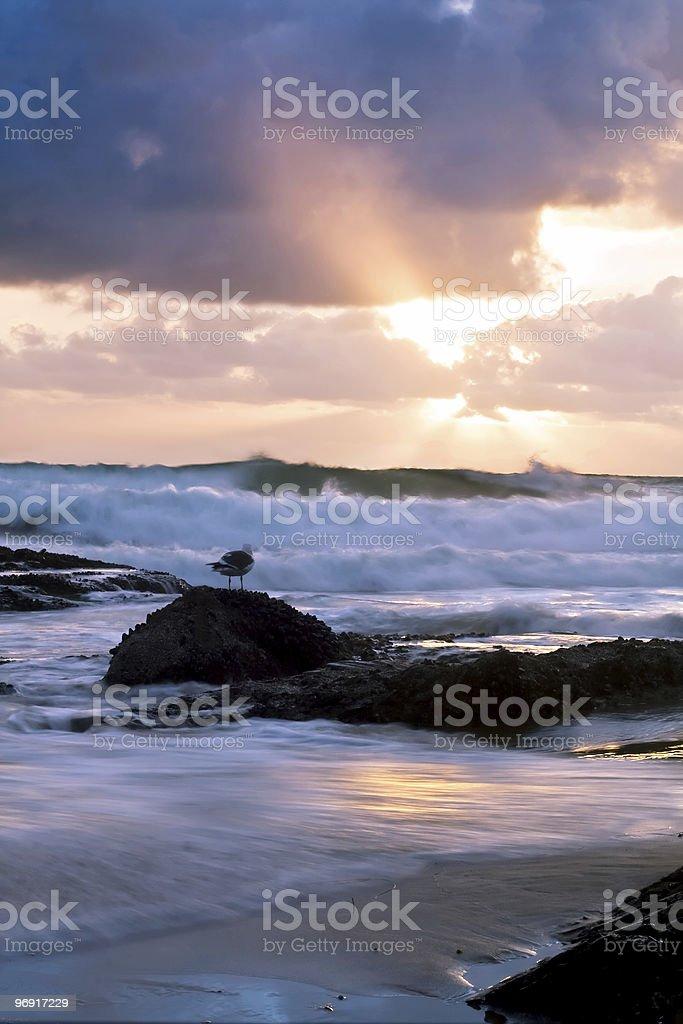 Stormy Sunset royalty-free stock photo