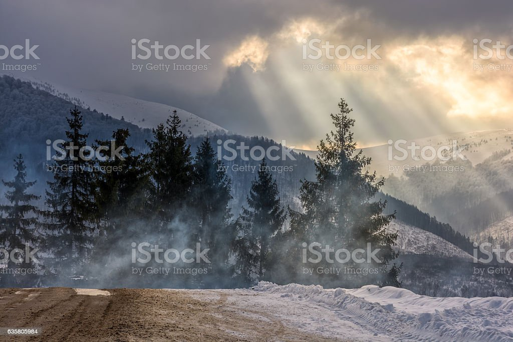 stormy weather over forest in mountains stock photo