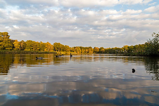 Stover See reflection – Foto