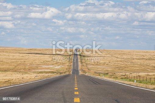 Straight Asphalt Road on the Wilderness