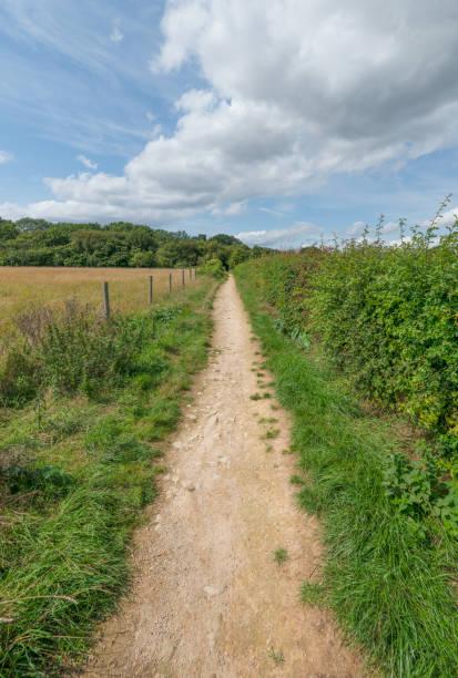 Gerader Landweg in England – Foto