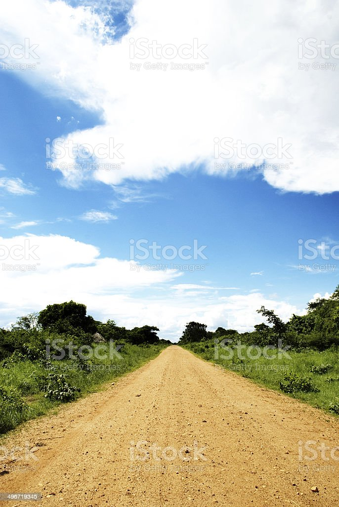Straight Dirt Road stock photo