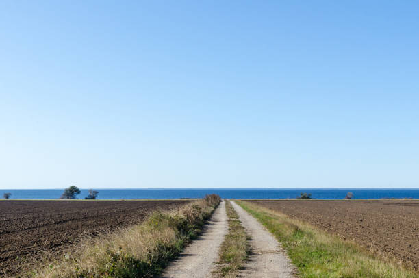 Straight dirt road to the coast stock photo