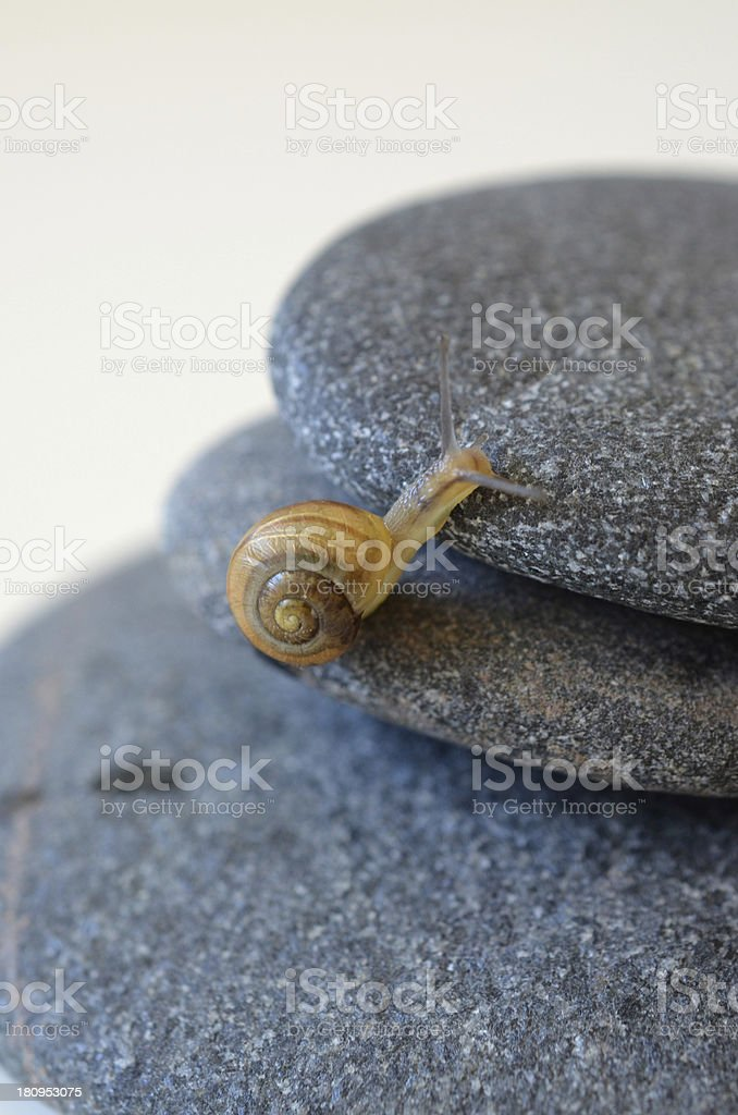 Straight forward royalty-free stock photo