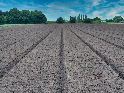 Straight furrows from precision ploughing in an arable field in Lancashire, England, UK