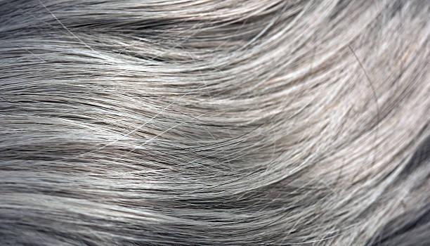straight gray hair stock photo