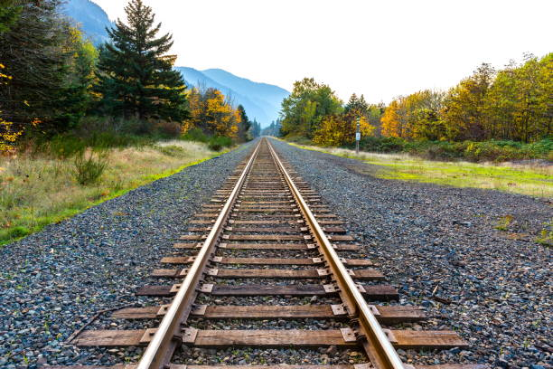 Straight Railroad Lines Straight railroad lines tramway stock pictures, royalty-free photos & images