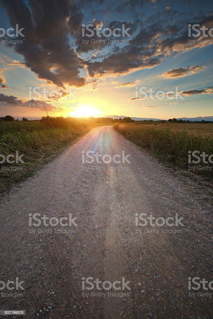 Straight to the sun stock photo