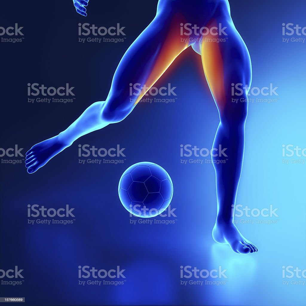 Strained thigh muscle concept in x-ray stock photo