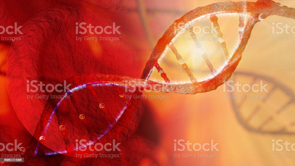 DNA strand and red Blood Cells stock photo