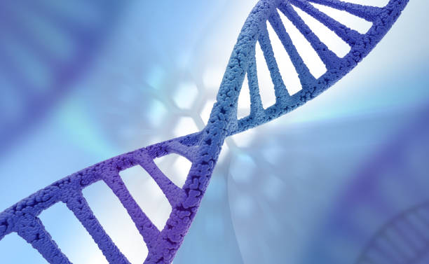 DNA strand carrying biological information. Background. stock photo