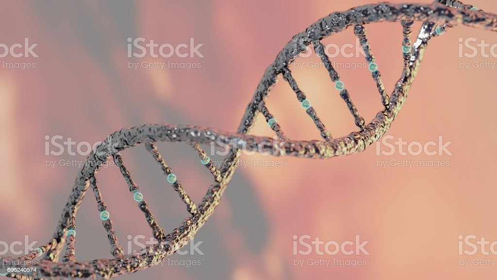 DNA strand helix concept, DNA research CRISPR stock photo