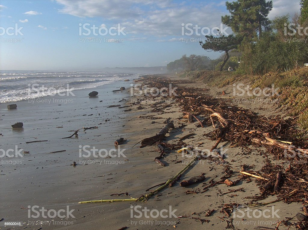 Strand nach Sturm foto de stock libre de derechos