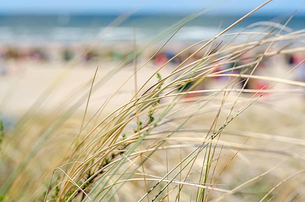Strand – Foto