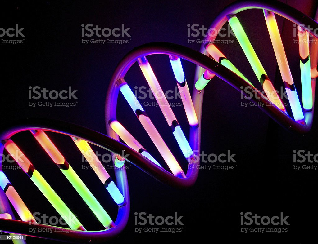 DNA strand Colorful model of a DNA double helix strand, against a black background Abstract Stock Photo
