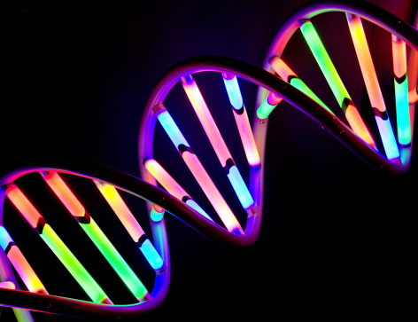 Dna Strand Stock Photo - Download Image Now