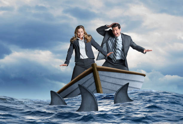 Stranded Business People Surrounded By Sharks in Dinghy A fearful businessman and businesswoman look down in fear as they stand in a wooden dinghy that is surrounded by a school of sharks. sailing dinghy stock pictures, royalty-free photos & images
