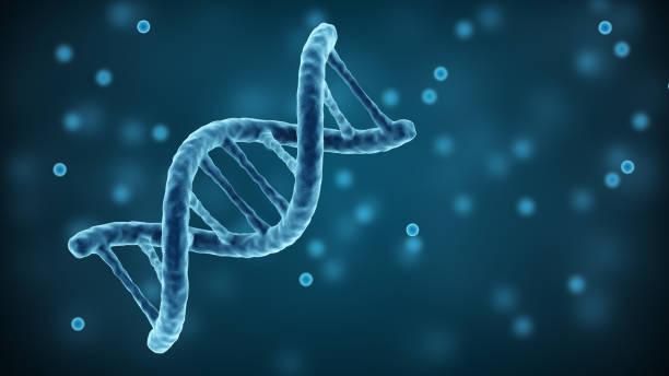 DNA strands background. Double helix structure DNA strands background. Double helix structure nucleotide stock pictures, royalty-free photos & images