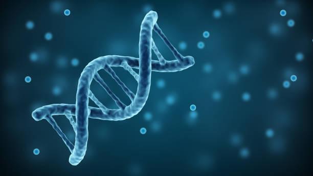 dna strands background. double helix structure - rna foto e immagini stock