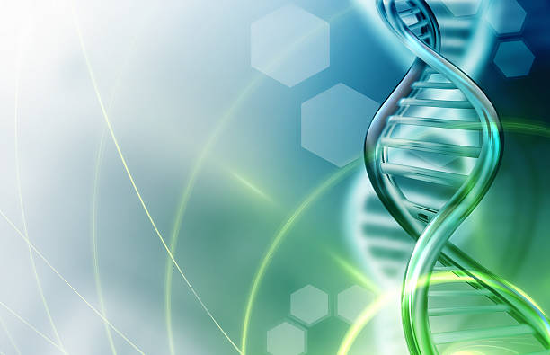 dna strands background - plant stem stock pictures, royalty-free photos & images