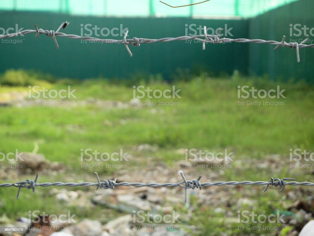 Strands of barb wire royalty-free stock photo