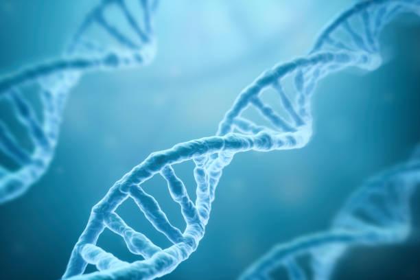 filamentos de la dna sobre fondo azul - investigación genética fotografías e imágenes de stock