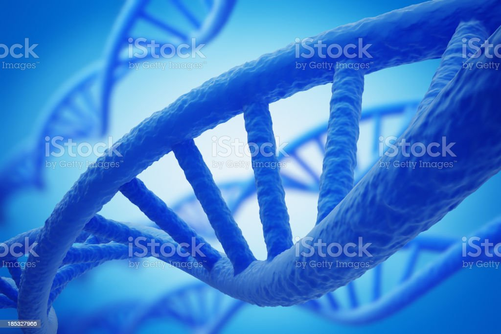 DNA Strands royalty-free stock photo