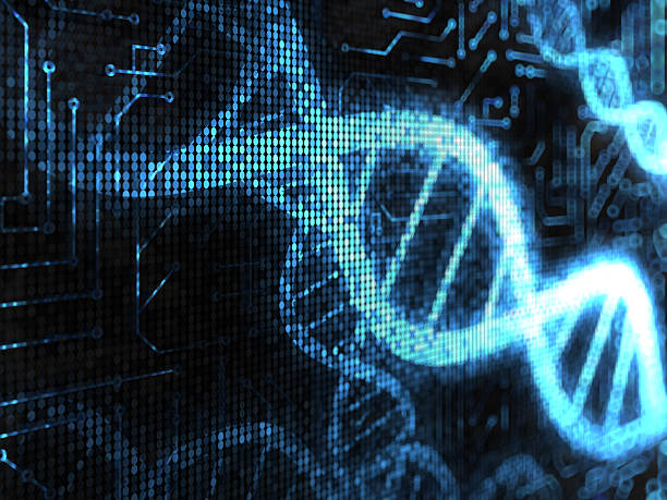 DNA Strands  high scale magnification stock pictures, royalty-free photos & images