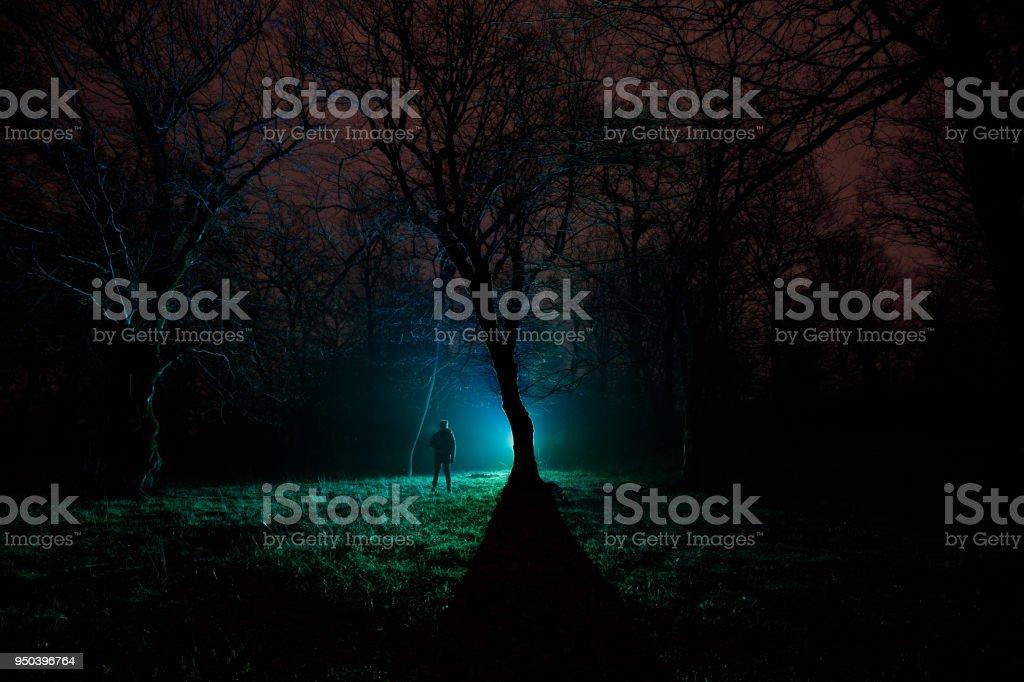 Luz Extrana En Un Bosque Oscuro En La Noche Silueta De La Persona Que Esta En El Bosque Oscuro Con La Luz Noche Oscura En El Bosque En Tiempo De Niebla Escena