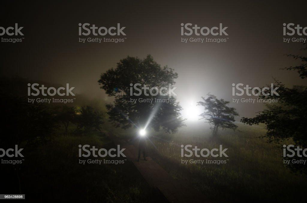 Strange silhouette in a dark spooky forest at night, mystical landscape surreal lights with creepy man - Zbiór zdjęć royalty-free (Azerbejdżan)